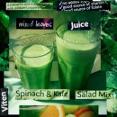 Green Smoothies, Veggie Shakes: Each Sip is a Healthy Treat!